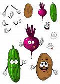Cucumber, potato and beet vegetables