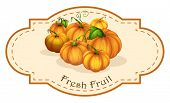 Illustration of a fresh fruit label with squash on a white background