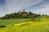 pic of yellow castle  - Meadows in spring in front of castle Ronneburg Wetterau Germany - JPG