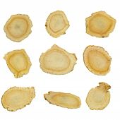 picture of ginseng  - collection of many sliced American ginseng isolated on the white background - JPG