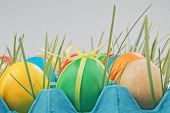 Colorful easter eggs in tray with grass