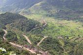 Original landscape Curvy Road