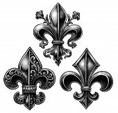 picture of fleur de lis  - Three gray scale - JPG