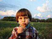 Little boy blowing dandelion on blue sky background.