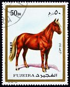 Postage Stamp Fujeira 1972 Horse, Domestic Animal