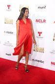 LOS ANGELES - OCT 10:  Zoe Saldana at the 2014 NCLR ALMA Awards Arrivals at Civic Auditorium on October 10, 2014 in Pasadena, CA