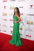 LOS ANGELES - OCT 10:  Gina Rodriguez at the 2014 NCLR ALMA Awards Arrivals at Civic Auditorium on October 10, 2014 in Pasadena, CA
