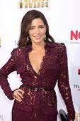 LOS ANGELES - OCT 10:  Adriana Fonseca at the 2014 NCLR ALMA Awards Arrivals at Civic Auditorium on October 10, 2014 in Pasadena, CA