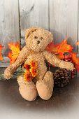 Rustic Teddy Bear