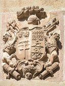 coat of arms in Maneru, Navarra - Spain