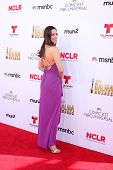 LOS ANGELES - OCT 10:  Mia Mastroianni at the 2014 NCLR ALMA Awards at Civic Auditorium on October 10, 2014 in Pasadena, CA