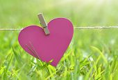 Cute heart Card hanging on the clothesline