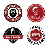 image of muay thai  - Vector MMA Labels  - JPG
