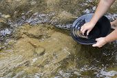 picture of gold panning  - gold panning iin a small stream in northern michigan - JPG