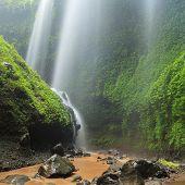stock photo of cataract  - Madakaripura Waterfall  - JPG