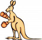Kangaroo Gloves