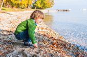 Adorable toddler boy playing by the lake on a nice warm and sunny day, wearing green pullover and je