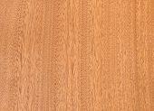 Nature  Pattern Of Teak Wood Decorative Furniture Surface