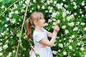 Adorable little girl playing with jasmin tree in a park on a nice spring day