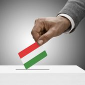 Black Male Holding Flag. Voting Concept - Hungary