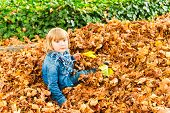 Cute toddler boy playing with yellow leaves on a nice sunny autumn day
