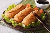 Spring Rolls Fried On A Plate Close-up And Sauce. Horizontal