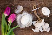 fresh tulips and easter egg