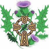 Stylized Celtic Cross Framed Thistle Flowers
