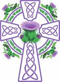 foto of scottish thistle  - vector image stylized purple Celtic cross framed by thistle flowers - JPG