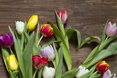 Spring easter tulips with heart shape abstract on vintage board