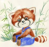 picture of bamboo forest  - Cute little red panda with blue trousers in a bamboo forest - JPG