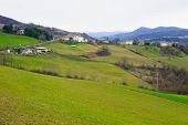 Countryside In Piacenza