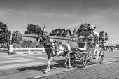 picture of carriage horse  - Horse carriage Parking in front of Wat Phrathat Lampang Luang temple for services to tourists in Lampang Thailand Process in BW Style - JPG