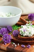 stock photo of chive  - Organic rye bread with fresh chives and cottage cheese vertical - JPG
