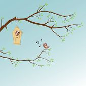 stock photo of singing  - spring background with singing bird on a branch - JPG
