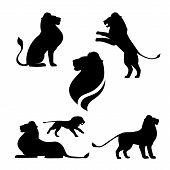 image of animal silhouette  - Lion set of black silhouettes - JPG