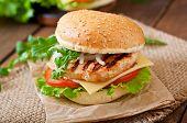 stock photo of burger  - Sandwich with chicken burger - JPG