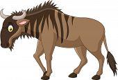 picture of wildebeest  - Vector illustration of Cartoon Strong animals wildebeest - JPG