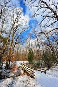 picture of backwoods  - Snow covered Wooden hikers bridge over a stream in a forest in Maryland - JPG