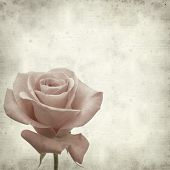 image of pale  - textured old paper background with pale pink rose - JPG