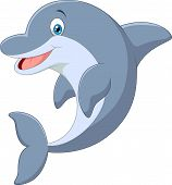 picture of dolphin  - Vector illustration of Cartoon Standing Dolphin isolated on white background - JPG