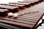 A background of marimba and mallots