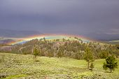 image of lamar  - Misty rainbow through the rain during storm Lamar Valley Yellowstone - JPG