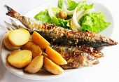 Grilled Portugal Sardine Fish