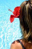 Tropical Pool Girl poster