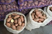 Fresh potatoes in a bags at the market