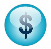The Glassy Aqua Blue Dollar Icon Button