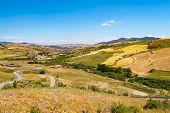 View Of The Countryside, Fields And Hills In The Region Of Cesaro In Northern Sicily poster