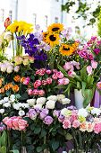 Beautiful Bouquets Of Flowers On The Market. Showcase With Flowers. Sale Of Flowers. Flower Shop. poster