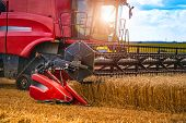 Combine Harvester Working On A Wheat Field. Agricultural Sector. Wheat Harvesting poster